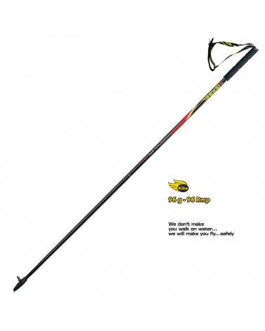 FX-75 R - Gabel ultralight trail running poles in Snake Carbon