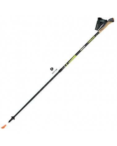 CARBON XT 2S-80 A.I.  - Gabel telescopic poles for nordic walking in Snake Carbon