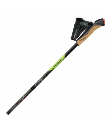 COBRA RE-VOLUTION - Gabel nordic walking foldable poles in Snake Carbon