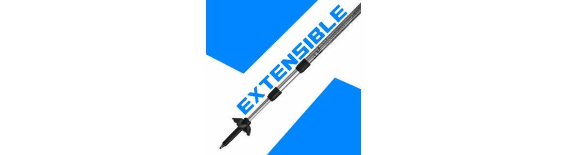Performance Extensible