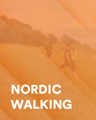 icona nordic walking